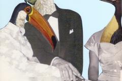 collage pajaro12