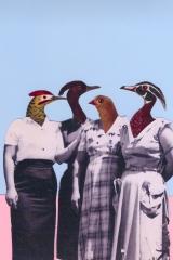 Bird-clan