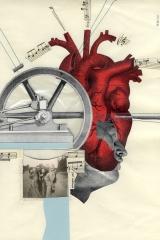 Machine anatomies