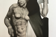 collage piel6-1