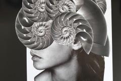 SpiralSeries2